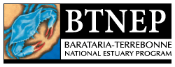 BTNEP Website Logo
